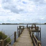 Lake Hammock Featured Image