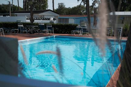 Ramblewood-Pool